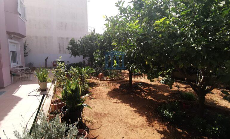 κήπος 1